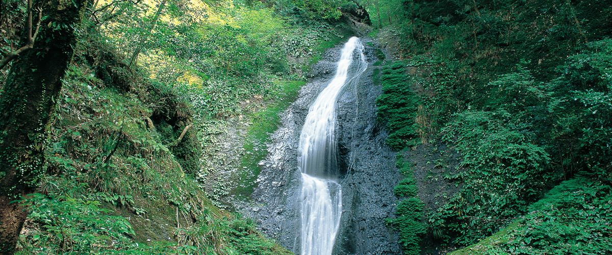 Aichi's Wonderful Waterfalls