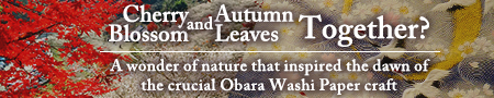 AICHI LIVING TALES - Cherry Blossom and Autumn Leaves Together?