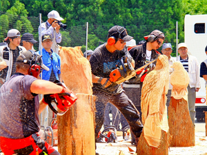 Chainsaw Art Competition