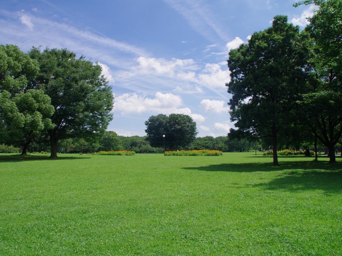 公園 庄内 緑地