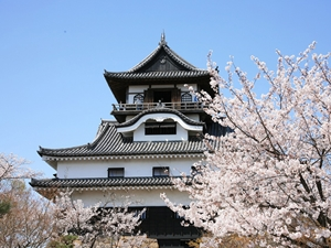National Treasure Inuyama Castle