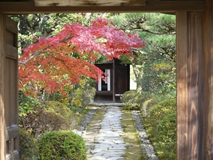 Urakuen Japanese garden / National Treasure teahouse Jo-an