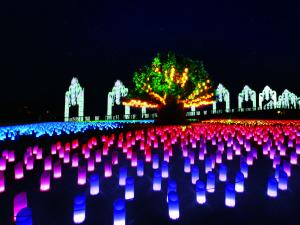 Lagunasia Illumination