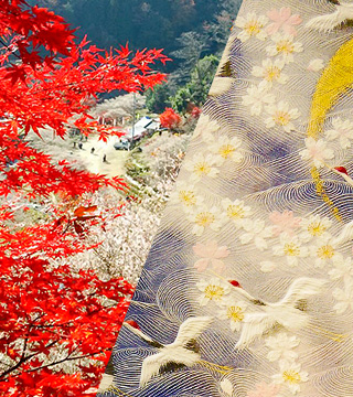 Cherry Blossom and Autumn Leaves Together? A wonder of nature that inspired the dawn of the crucial Obara Washi Paper craft