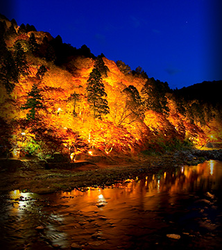 Aichi's Amazing Autumn Attractions